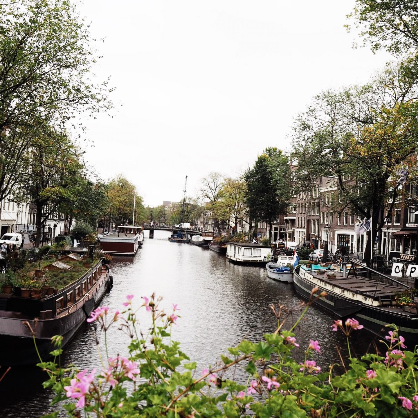 Amsterdam : Where We Stayed What We Did